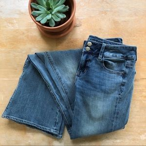 🌵 NBW American Eagle Artist Flare Jeans 🌵